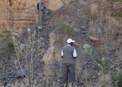 Etudes géologiques sur les blocs de Petroma Inc